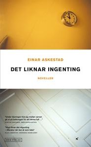 Det liknar ingenting (e-bok) av Einar Askestad