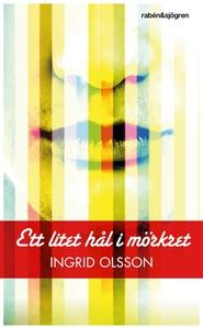 Ett litet hål i mörkret (e-bok) av Ingrid Olsso