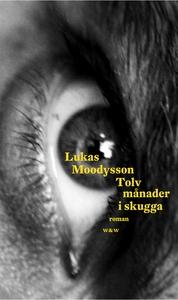 Tolv månader i skugga (e-bok) av Lukas Moodysso