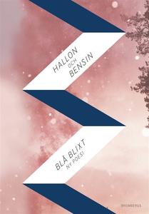 Hallon och bensin (e-bok) av Karin Brygger, Lin