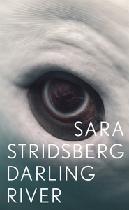 Darling River (e-bok) av Sara Stridsberg