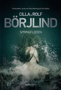 Springfloden (e-bok) av Cilla och Rolf Börjlind
