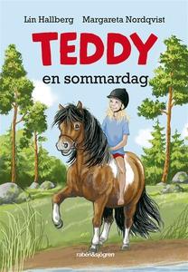 Teddy en sommardag (e-bok) av Lin Hallberg