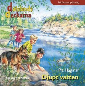 Dalslandsdeckarna 7 - Djupt vatten (ljudbok) av