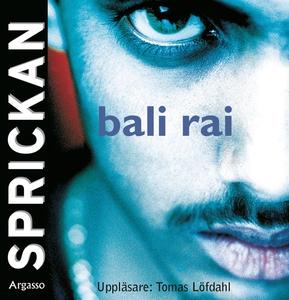 Sprickan (ljudbok) av Bali Rai