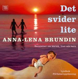 Det svider lite (ljudbok) av Anna-Lena Brundin