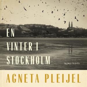 En vinter i Stockholm (ljudbok) av Agneta Pleij