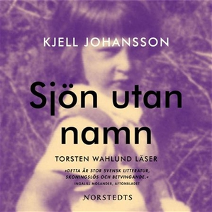 Sjön utan namn (ljudbok) av Kjell Johansson