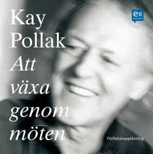 Att växa genom möten (ljudbok) av Kay Pollak