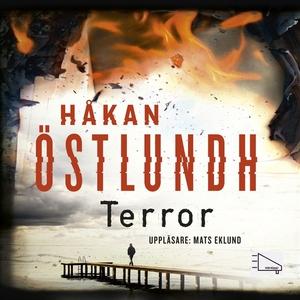 Terror (ljudbok) av Håkan Östlundh
