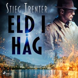 Eld i håg (ljudbok) av Stieg Trenter