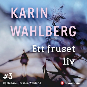 Ett fruset liv (ljudbok) av Karin Wahlberg
