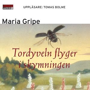 Tordyveln flyger i skymningen (ljudbok) av Mari