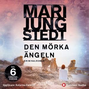 Den mörka ängeln (ljudbok) av Mari Jungstedt