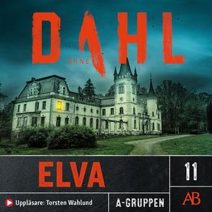 Elva (ljudbok) av Arne Dahl