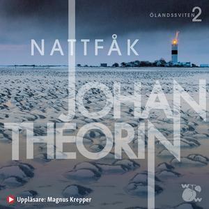 Nattfåk (ljudbok) av Johan Theorin