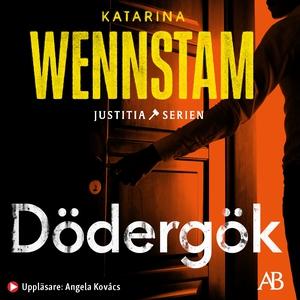Dödergök (ljudbok) av Katarina Wennstam