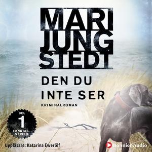Den du inte ser (ljudbok) av Mari Jungstedt