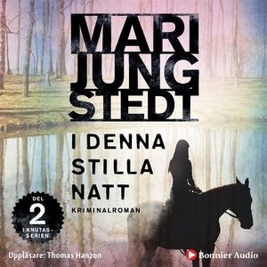 I denna stilla natt (ljudbok) av Mari Jungstedt
