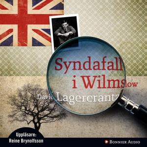 Syndafall i Wilmslow (ljudbok) av David Lagercr