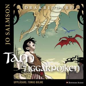 Tam tiggarpojken (ljudbok) av Jo Salmson