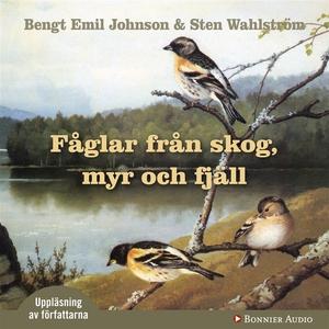 Fåglar från skog, myr och fjäll (ljudbok) av St