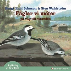 Fåglar vi möter på väg mot stranden (ljudbok) a