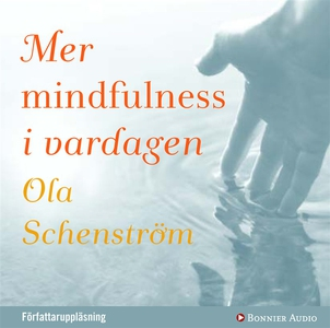 Mer mindfulness i vardagen (ljudbok) av Ola Sch