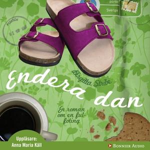 Endera dan (ljudbok) av Birgitta Stribe