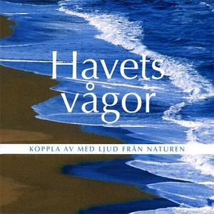 Havets vågor (ljudbok) av Björn Melander
