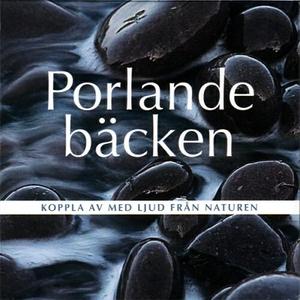 Porlande bäcken (ljudbok) av Björn Melander