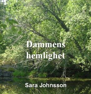 Dammens hemlighet (ljudbok) av Sara Johnsson
