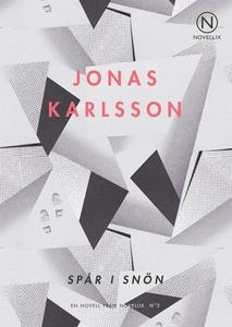 Spår i snön (ljudbok) av Jonas Karlsson