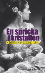 En spricka i kristallen (e-bok) av Cecilia Gyll