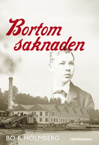Bortom saknaden (e-bok) av Bo R Holmberg