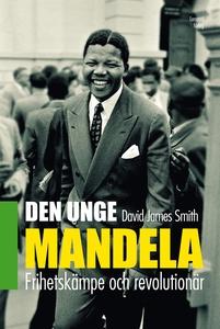 Den unge Mandela (e-bok) av David James Smith
