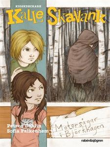 Motorsågar i Björkhagen (e-bok) av Petrus Dahli