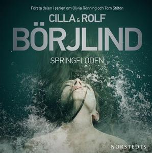 Springfloden (ljudbok) av Cilla och Rolf Börjli