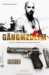 Gängmedlem (e-bok) av Niklas Malmborg, Geir Sta