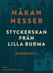 Styckerskan från Lilla Burma (e-bok) av Håkan N