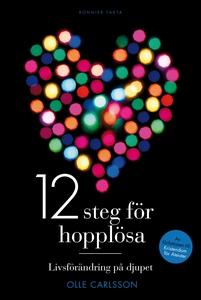 12 steg för hopplösa (e-bok) av Olle , Olle Car