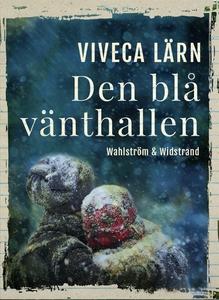Den blå vänthallen (e-bok) av Viveca Lärn
