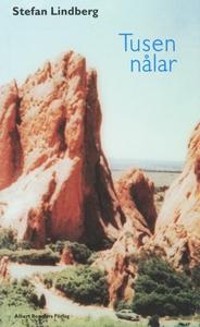 Tusen nålar (e-bok) av Stefan Lindberg