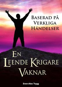En Leende Krigare Vaknar (e-bok) av Sven-Alex T