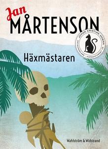 Häxmästaren (e-bok) av Jan Mårtenson