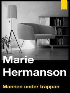 Mannen under trappan (e-bok) av Marie Hermanson