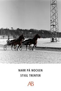 Narr på nocken (e-bok) av Stieg Trenter