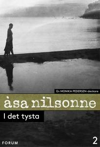 I det tysta (e-bok) av Åsa Nilsonne