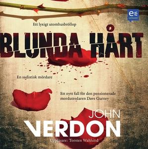 Blunda hårt (ljudbok) av John Verdon