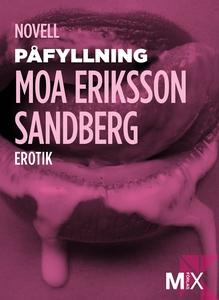 Påfyllning (e-bok) av Moa Eriksson, Moa Eriksso